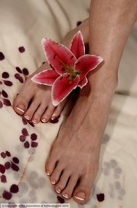 Reflexology. Adult foot 3